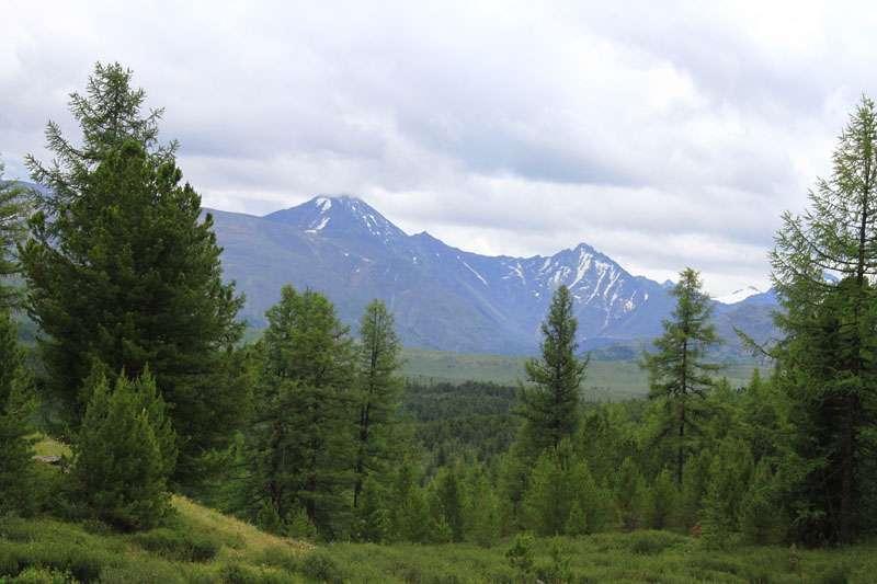 перевал Улаганский